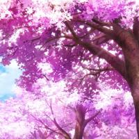 Poll: Which New Anime Series Has the Prettiest Cherry Blossoms?