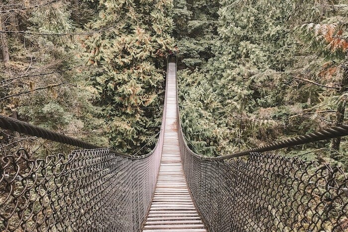 A walk in the woods - A path towards health