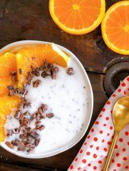 Coconut Milk Instant Pot Yogurt