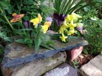 A rock garde bouquet