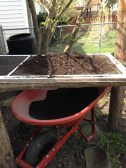 finished compost in wheelbarrow