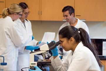 hypothesis-reverse engineer lacrtic acidosis