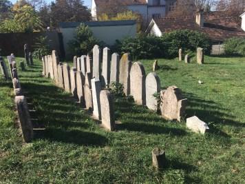 Jewish Cemetery in Zemun