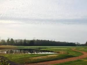 Winter Golf Open @ The Oaks Golf Club & Spa