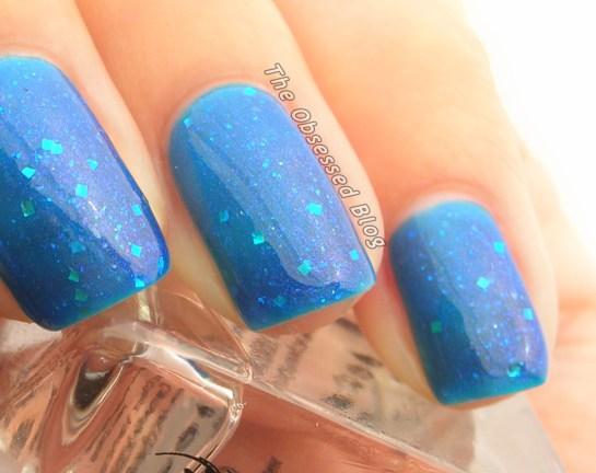 Colors_BluebonnetsMacro