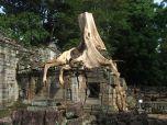 tree overgrowing an entrance in Preah Kahn