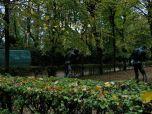 Le jardin au Musee Rodin