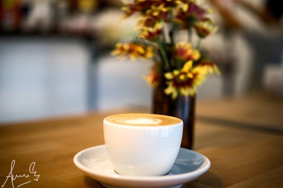 Singapore Nylon Coffee Roasters SachaFernandez