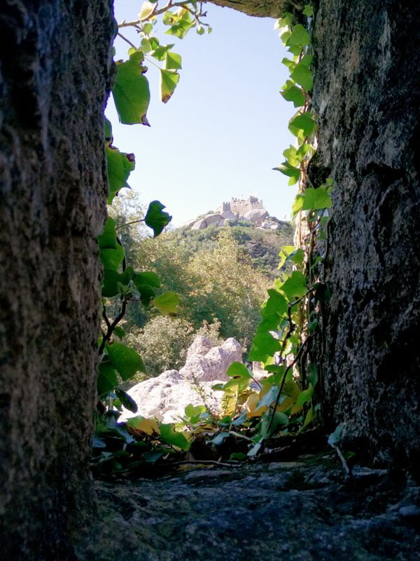 Portugal - Sintra Moorish Castle Window