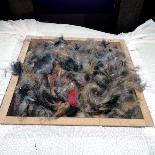 Daylesford Creswick Woolen Mills Possum