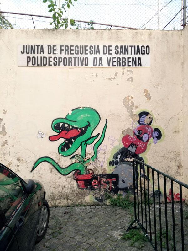 Portugal - Lisbon Street Art Patio Dom Fradique Plant