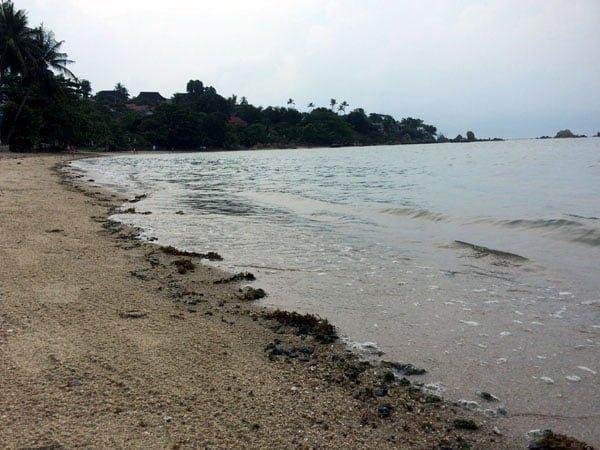 Koh Samui - Renaissance Beach Shore