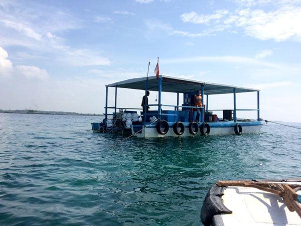 Bali Grand Mirage Resort Seawalker Pontoon