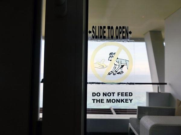 Bali Samabe Balcony Monkey