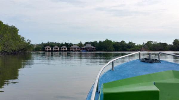 Bintan Mangrove Boat