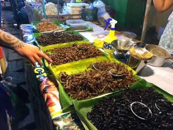 Phuket Wat Suwankiriket Market Insects Stall