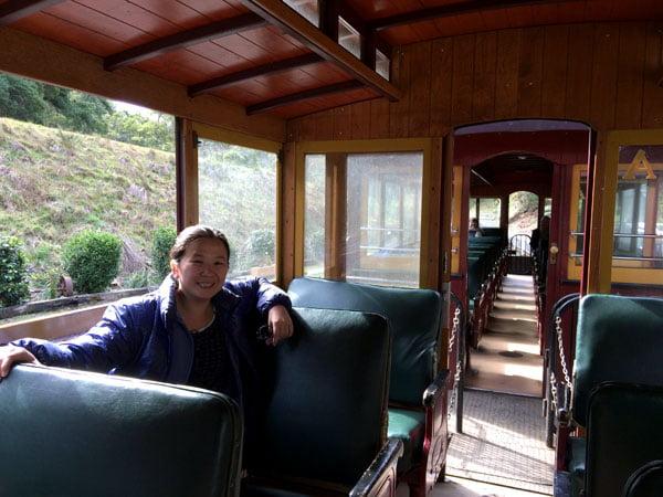 Gippsland Walhalla Train Seats