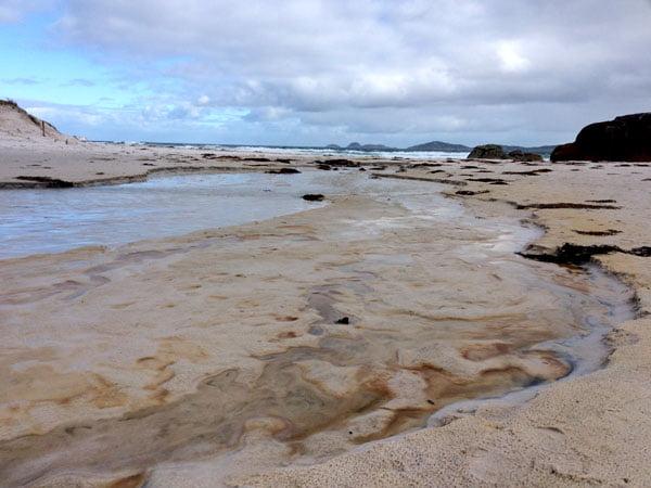 Gippsland Wilsons Promontory Squeaky Beach Sand