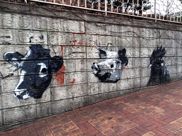 Seoul Ihwa Mural Village BnW Animals