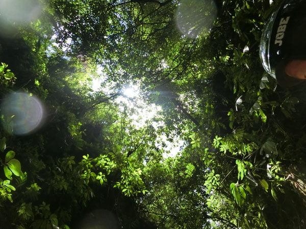 Bali Casio Canyon Tubing Canopy