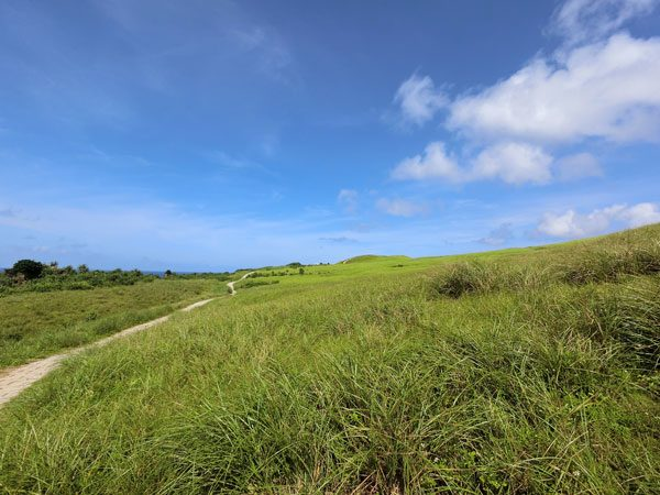 Taiwan Lanyu Green Grass Field
