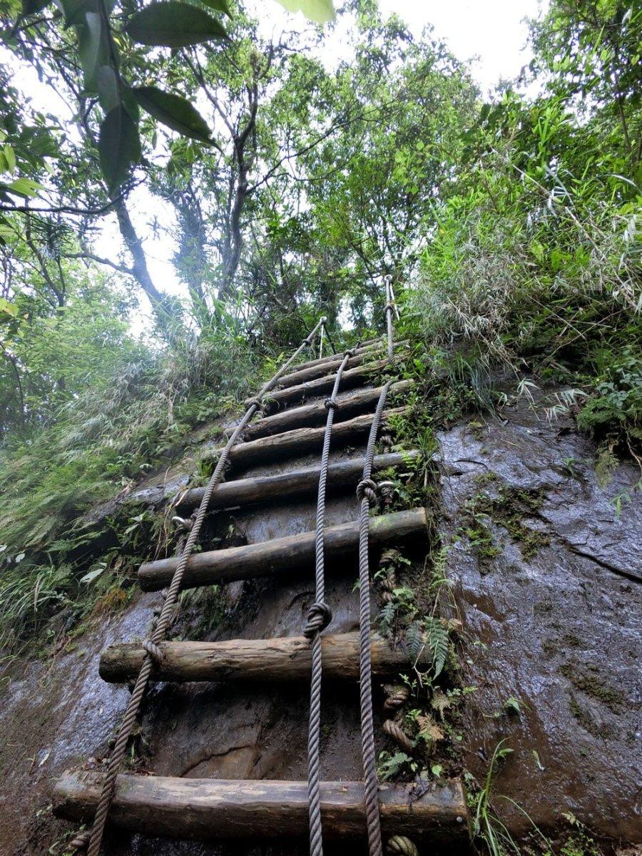 New Taipei Sandiaoling Wooden Ladder