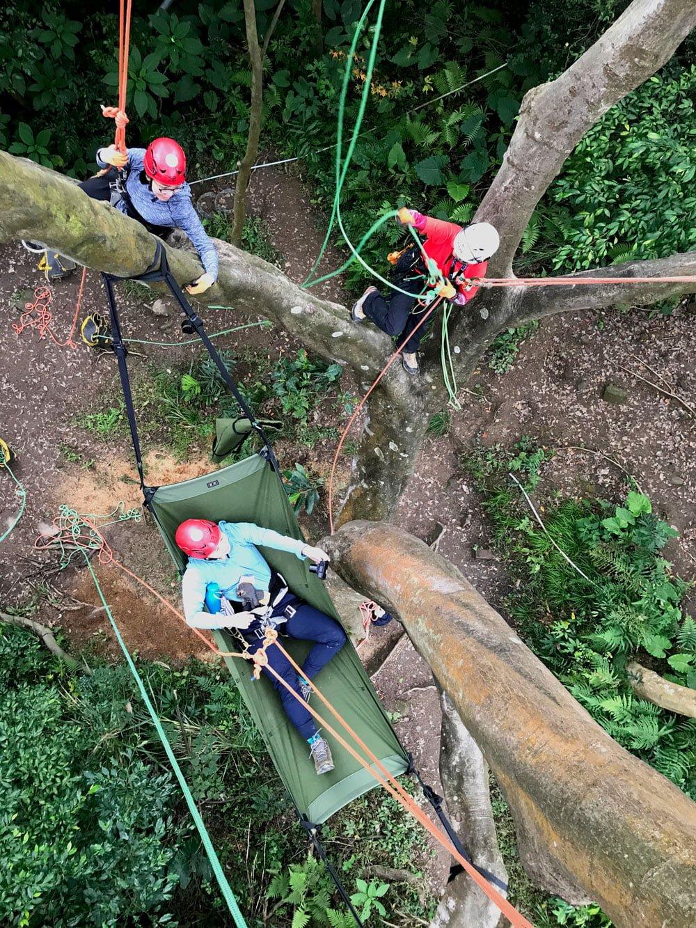 Taoyuan Tree Climbing Hammock Me