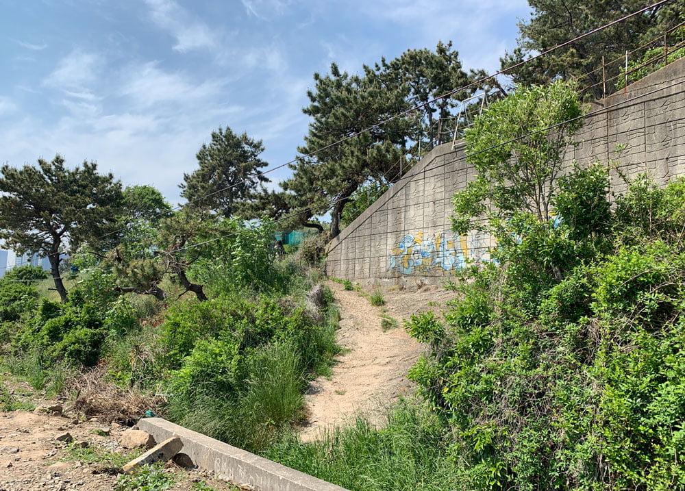 Busan Mipo Tracks Staircase