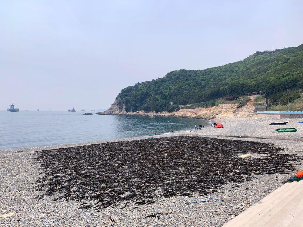 Busan Taejongdae Beach Drying