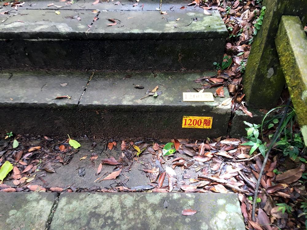 Guishandao 401 Peak Step Number