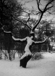 edouard-de-pazzi_artland_tree-i