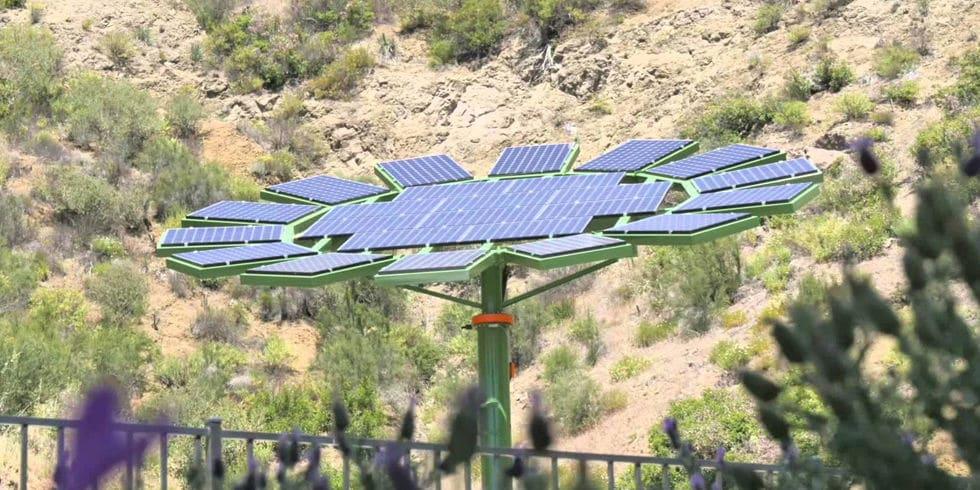 James Cameron Solar Sunflower Powur