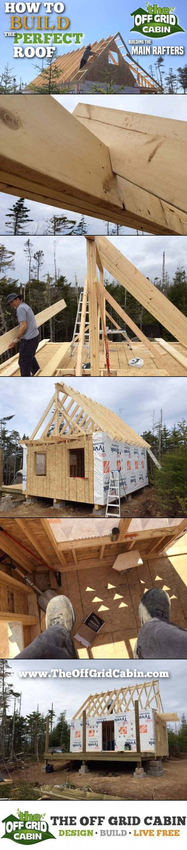 The Off Grid Cabin How To Build The Perfect Roof Main Rafters Pinterest Image