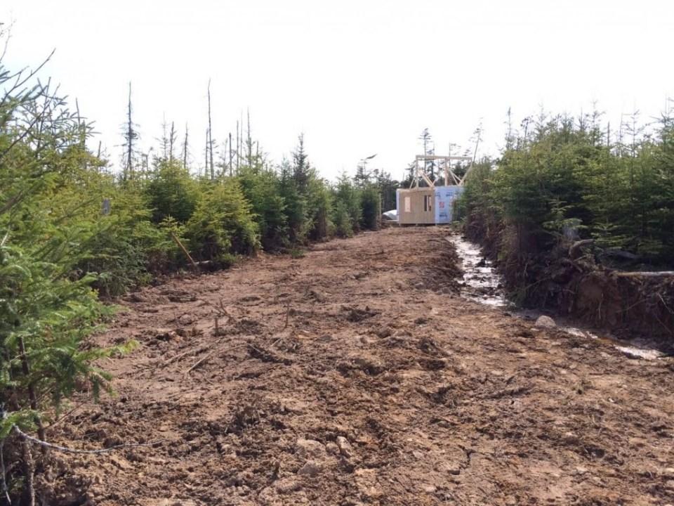 The-Off-Grid-Cabin-Roof-Ridge-Beam-7