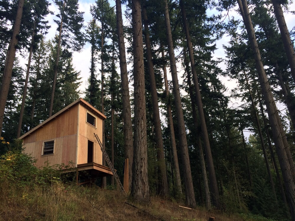 off grid cabin six day cabin day 5-5
