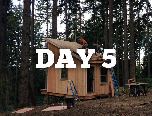The Six Day Cabin Build Day 5