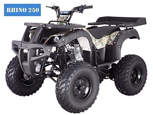 BRAND New Adult Size 250 Adult Size ATV with standard manual clutch and reverse