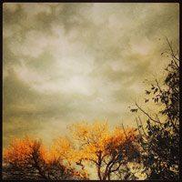 last-rays-sky-sm