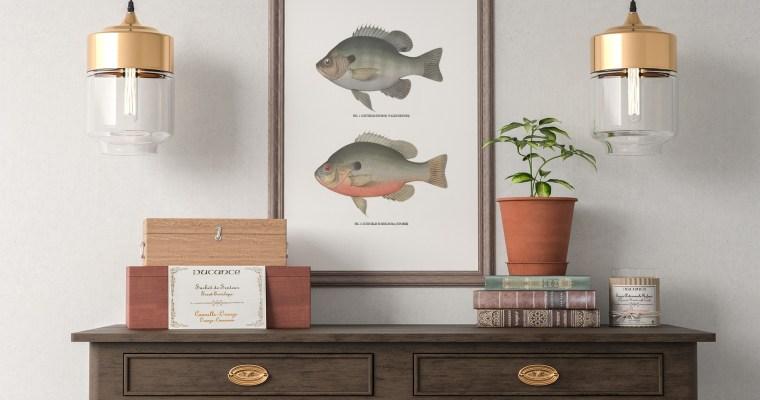 Vintage Fish Wall Art – Set of 4
