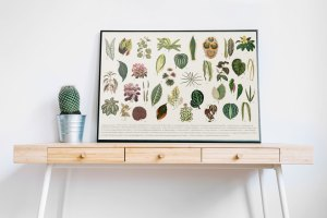 Botanical Leaves Wall Art