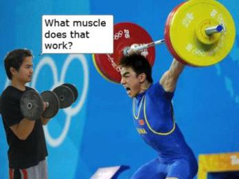 what-muscle-snatch1