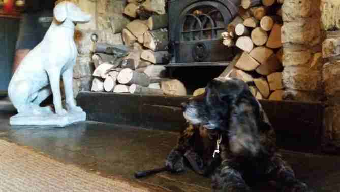 CotswoldsCharlie liess in front of a woodstove looking at a stone dog