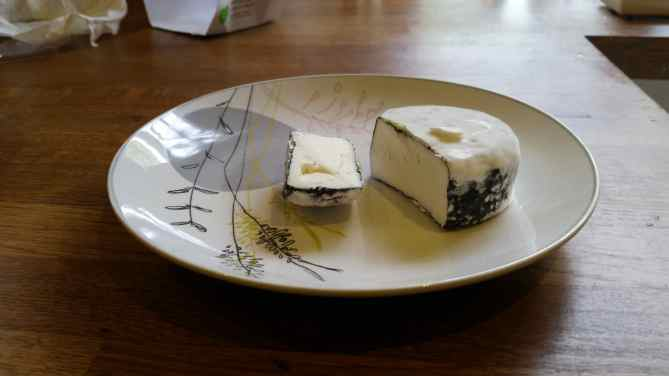 Home made goats' cheese