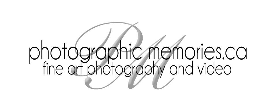 new pm logo black on white