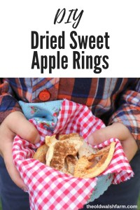 Dried sweet apple rings