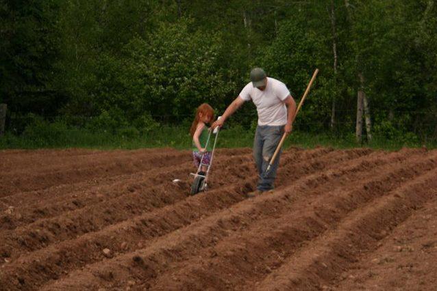 Start a farm