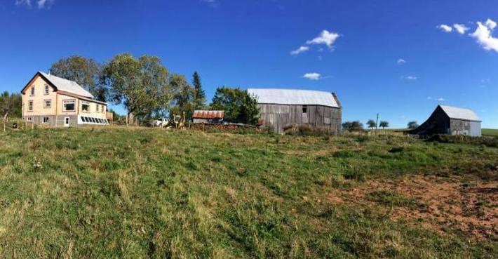 Our Farm at Bazel's Place