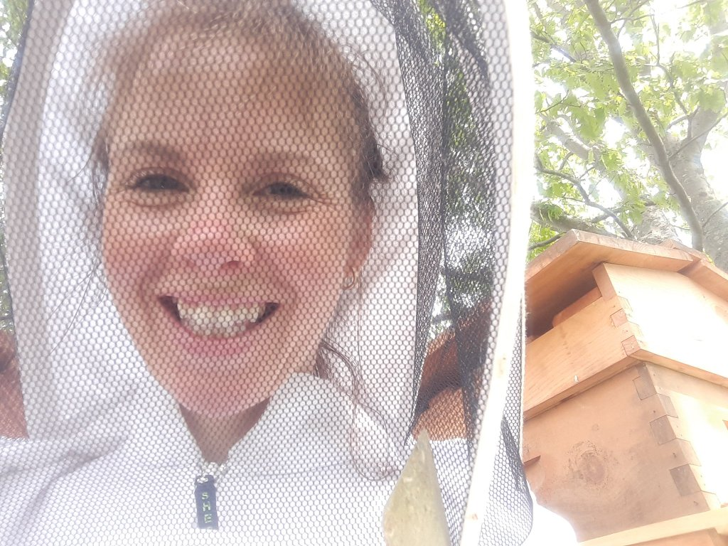 What is the start-up cost of beekeeping?