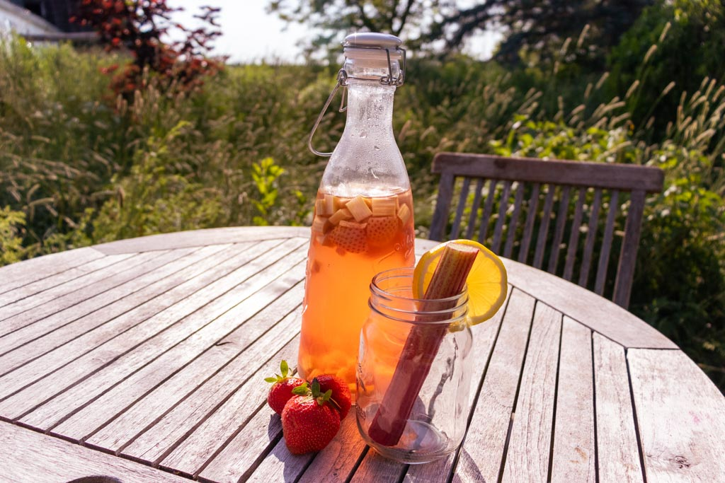 strawberry rhubarb water kefir