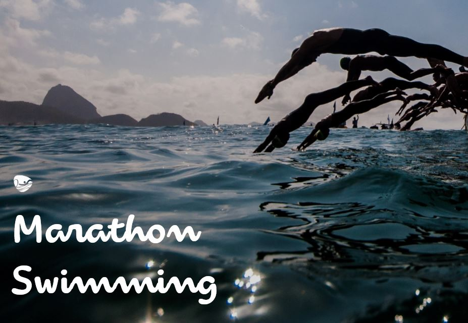 open water swimming fort copacabana